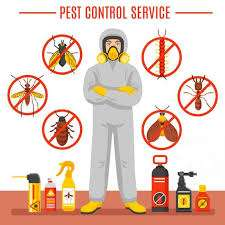 Pest Removal Company Flamborough